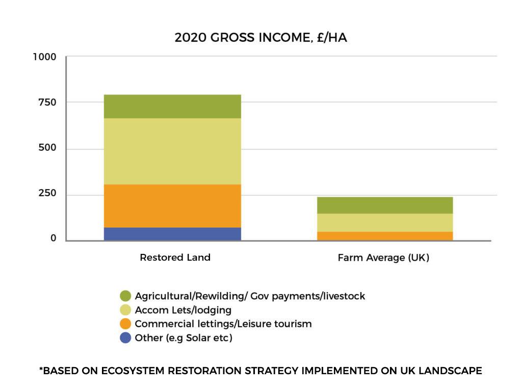 2020 Gross Income